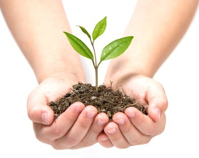 how-to-lead-the-way-through-lead-nurturing-marketing-campaigns